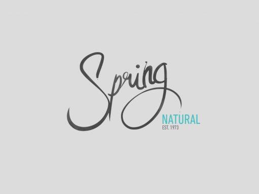Spring Natural New York